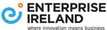 Big Enterprise Ireland Logo